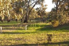 horse-yards